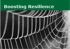 Boosting Resilience