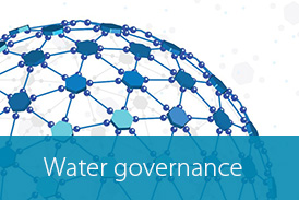 Water satellite site Button water governance
