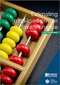 "RC cover page ""Brochure Estimating mobilised private climate finance"""