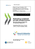 "RC cover page ""Estimating mobilised private finance"""