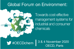 Global Forum on Environment: Towards cost-effective management systems for industrial and consumer chemicals