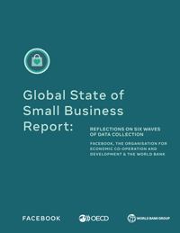 Global State of Small Business Report: Reflections on Six Waves of Data Collection