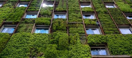 Wall of high-rise building covered with plants